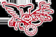 Logo Pizza Express Lörrach